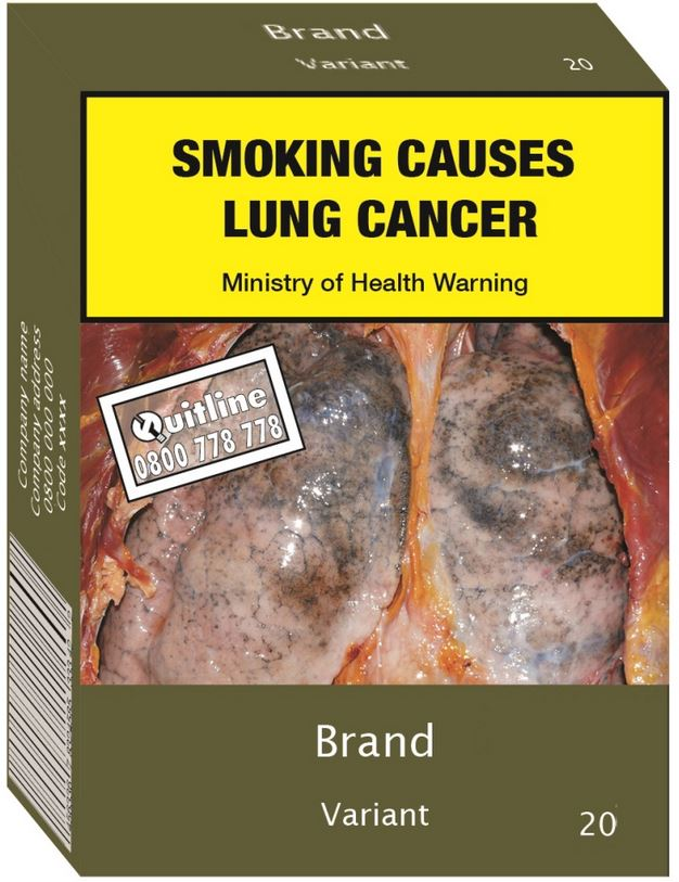 A simple mock-up of what cigarette packs would look like under the proposals for standardised packages. Image / Ministry of Health