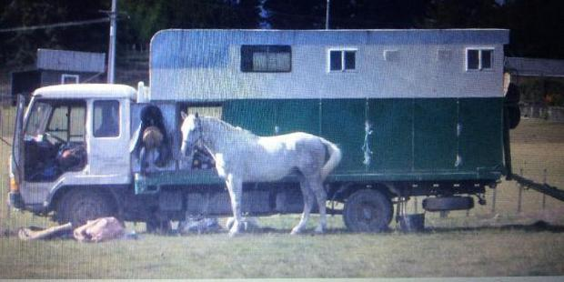 Anyone who has seen the horse truck is asked to contact police. Photo / Supplied via police