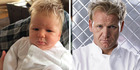 Maybe Gordon Ramsay's found himself an adorable minion for Hell's Kitchen?
