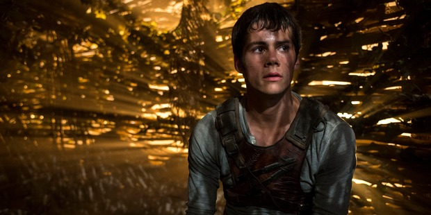 Loading Actor Dylan O'Brien stars in the Maze Runner movies. Photo / 20th Century Fox