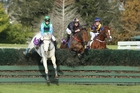 I've Got This (centre) got up to beat Snodroptwinkletoes (left) and Brer (right) by the width of a cigarette paper in the McGregor Grant Steeplechase at Ellerslie yesterday. Photo / Trish Dunell