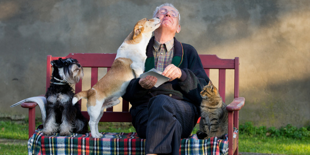 Dogs can be invaluable additions to the lives of our elderly friends and family. . Photo / Thinkstock