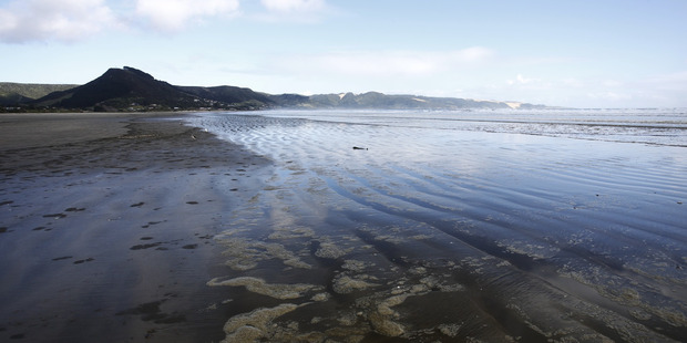 Ahipara beach,, at the bottom end of 90 Mile Beach, where police seized a record haul of drugs.