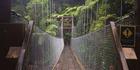 A bridge in the Abel Tasman National Park track.