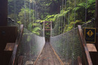 A bridge in the Abel Tasman National Park track.