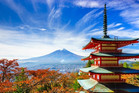 Who needs an excuse to go to Japan? Photo / iStock