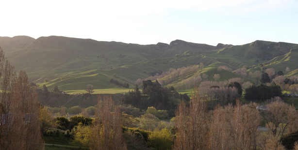 Havelock North farm, sold for $8m, subject to the OIO Overseas Investment Office. Photo / Duncan Brown