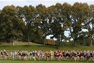 Start of Junior Girls Race - Waikato Bay of Plenty Secondary Schools, X-Country Champs, A&P Oval, Agrodome Photo credit: Macspeedfoto