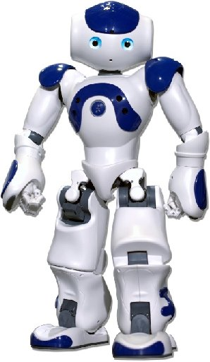 "The robots can be programmed to walk and talk and do what is described as ""other kinds of cool stuff""."