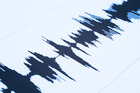 The magnitude 4.5 quake struck just east of Seddon shortly before 4am. Photo / iStock