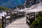 A Chinese tourist was caught walking off a boardwalk and collecting water in the Mammoth Hot Springs area. Photo / iStock