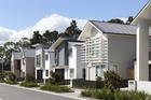 A row of houses in the new Hobsonville housing development.