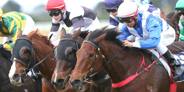 Shezhardtocatch and Doni Prastiyou (right) get home with a well-timed run to beat To Be Sure (middle) and First Class at Ruakaka on Saturday. Photo / Trish Dunell