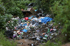 This illegal dumping site in native bush near Russell is expected to cost $50,000 to clean up. Photo / Michael Cunningham