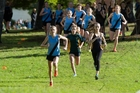 AT THEIR BEST: The future of Whanganui Schools Cross-country Caitlyn Alabaster (Collegiate) [left], Rebecca Baker (High School) and Nikita McDonald (Girls' College) with Libby Abbott on the left leading the chasing group at the Whanganui Schools Championships last month.PHOTO/ROB VAN DORT