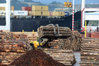 The rise in international sales was driven by a 42 per cent jump in logs, wood and wood articles to $373 million and a 22 per cent rise in fruit exports to $539 million. Photo / Mark Mitchell