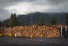 Lumbercube site.  Photo/Stephen Parker