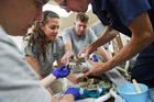Dr Katharine Hope, Lauren Augustine, Matt Evans and Dr Don Neiffer work on the jaw Dorothy the irritable 58-year-old croc injured in a fight with another croc. Photo: Matt McClain/Washington Post