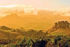 The beautiful colours of Coromandel. Photo / Tim Roxborogh