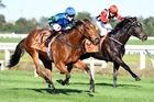Bella Gioia (left) sat three wide and was too strong late in the first race at Te Rapa. Photo / Race Images