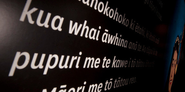 Figures showed 1353 schools do not offer some level of te reo Maori language education, while 1185 schools do.