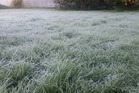 Fog restrictions are in place at Auckland Airport after a frosty start to the morning. Photo / Zoe Farnath