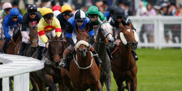 Ross Neal has resigned from his co-chief stipendiary steward role with  Racing Integrity Unit. Photo / Getty