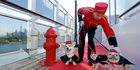 Kennel Master Oliver Cruz tends to celebrity dogs Wally, from left, Ella and Chloe outside the kennel aboard the ocean liner Queen Mary 2. Photo / AP