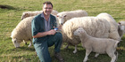 Harry Whiteside - national Sheep and Beef Cattle Veterinarian of the Year. Photo / Duncan Brown