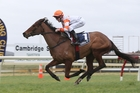 Candle In the Wind raced home to win at Ruakaka yesterday.