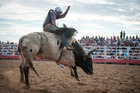 The Deni Ute Muster, with its horse riding, rodeo and ute racing, is a highlight of the calendar for Deniliquin, a New South Wales Outback town.