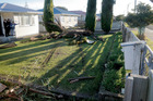 A car took out two trees when it crashed through two Puriri St front yards. Photo/Bevan Conley