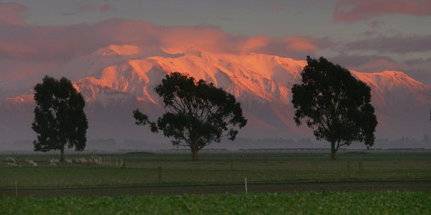 Early morning sunlight catches Mt Hutt in the Southern Alps. Photo / File