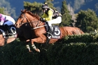 Matthew Cropp and Erik The Viking on their way to winning yesterday's Wellington Steeplechase. Photo / Race Images