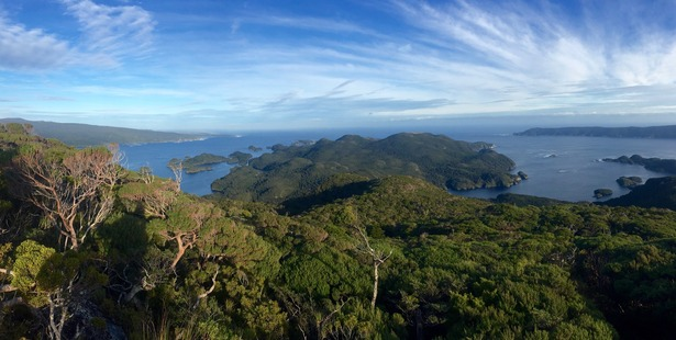Anchor Island in Dusky Sound, southwest Fiordland, where the  Department of Conservation moved its first kakapo in 2005 following the eradication of the island's stoats.  Photo / Andrew Digby, DOC