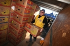 Denis Parkes, a Lions Club member, with one of the dozens of banana boxes of fruit collected in Whangarei last year for the Citrus for Christchurch campaign. Photo / Michael Cunningham