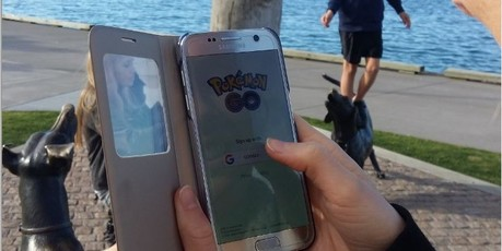 Pokemon GO at the Hairy McClary statue on the Strand. PHOTO/ALLISON HESS