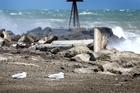 There were no boats fishing the windy Whanganui coast yesterday, Coastguard radio operator Pam Gilligan said. Photo / Bevan Conley