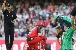 Adam Zampa ran out Peter Nevill using his nose in the Melbourne derby at Docklands Stadium. Photo / Getty Images.