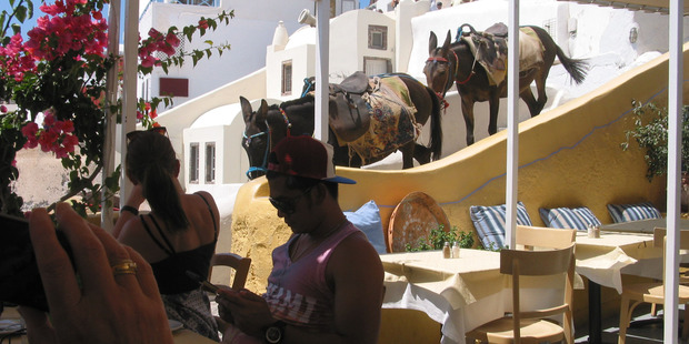 Donkeys walk past a restaurant on the island of Santorini, Greece. Photo / Supplied