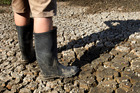 Drought causing problems for farmers.