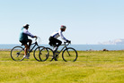 Cyclists take advantage of the warm weather to cruise the Rotary Pathway along Awatoto.