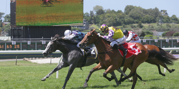 Sacred Elixir roars down the outside to snare the Countdown to Karaka Million at Ellerslie on Saturday.Picture / Trish Dunell