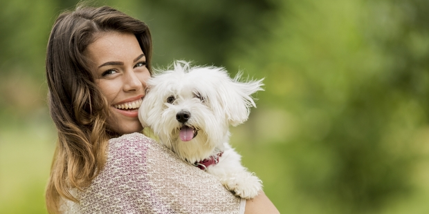 A new study suggests that dogs really can recognise emotions in both humans and other dogs using visual and audio cues. Photo / iStock