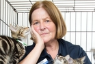 MEOWED OUT: It's a hectic kitten season and SPCA shelter manager Karen Rolfe is inundated with kittens. PHOTO/STEPHEN PARKER
