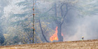 View: Photo gallery of large scrub fire at Poraiti