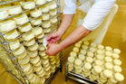 Employee Darryn Anderson labels a rack of camembert at Fonterra Cooperative Group's Te Roto cheese factory in Paraparaumu. Photo / Bloomberg