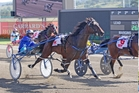 Have Faith In Me (left) paced a record 1:47.5 winning the Miracle Mile in February. Picture / Harness Racing Victoria