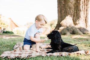 Royals slammed for 'animal cruelty'
