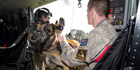Leading Aircraftman Thomas Olsen and Koda prepare to disembark during helicopter familiarisation training at RNZAF Base Auckland.
